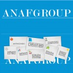 Fast Microsystem - ANAF Group